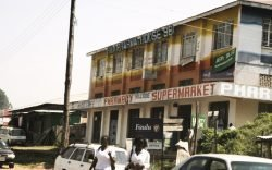 Kakamega town is known for being the home of Kakamega Forest which is home to rare plants and animals including the red-tailed monkey and the blue turaco.