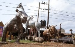 Dagoretti artisans are famous for their legendary heritage of creative works mainly for household items and decorative art pieces made out of metal and now they are going wild.