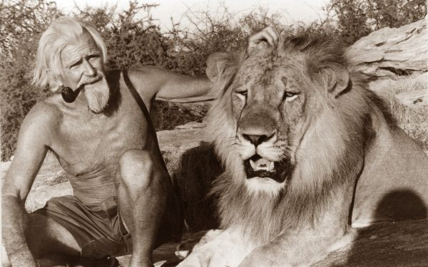 Because of his tireless work at rehabilitating big cats in captivity, George Adamson today occupies a place at the Kenya Geographic Hall of Fame.