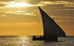 The Dhow has been described as the most graceful of sailing vessels. For centuries, it plied the western trading routes of the Indian Ocean until modernity caught up with it.