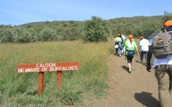There is more to hiking than meets the eye, especially in terms of physical preparation. I have compiled this list to help you when preparing for a hike.