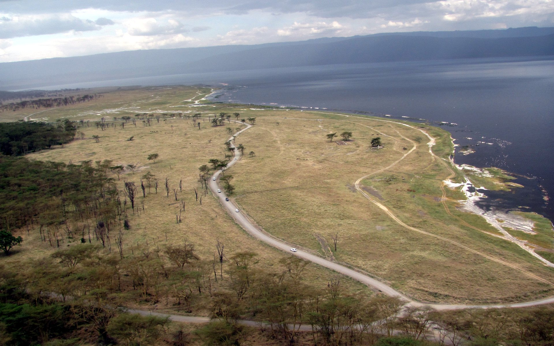 Here are three reasons Lake Nakuru National Park should never miss in your travel bucket list when you are visiting Nakuru town.