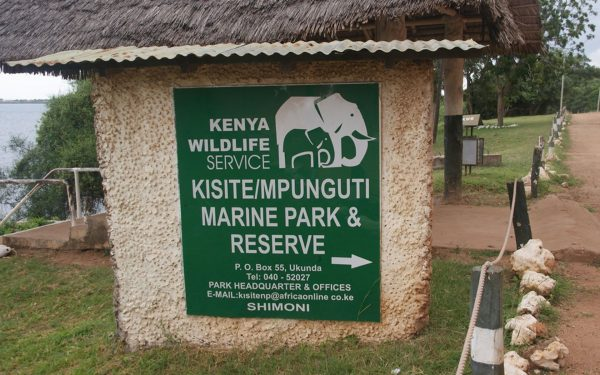 Kisite Mpunguti Marine Park & Reserve is an official no-take zone but that does not mean you cannot enjoy yourself. Here are 6 things to do.