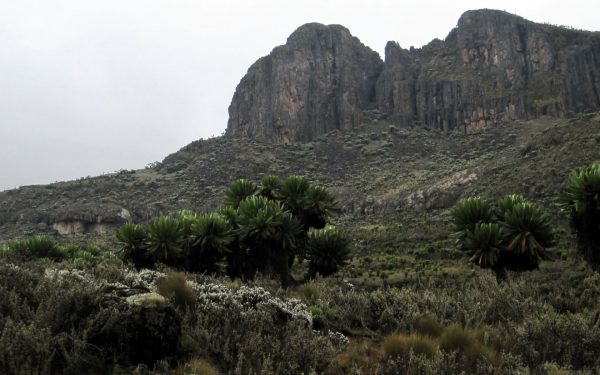 Mount Elgon National Park lays claim to one half of Mount Elgon. But besides the mountain, there are other things to do there. Here are 5.