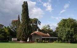 The Karen Blixen Museum on Karen Road is the restored house of Danish author, Isak Dinesen. Here are seven things you can do when you visit.