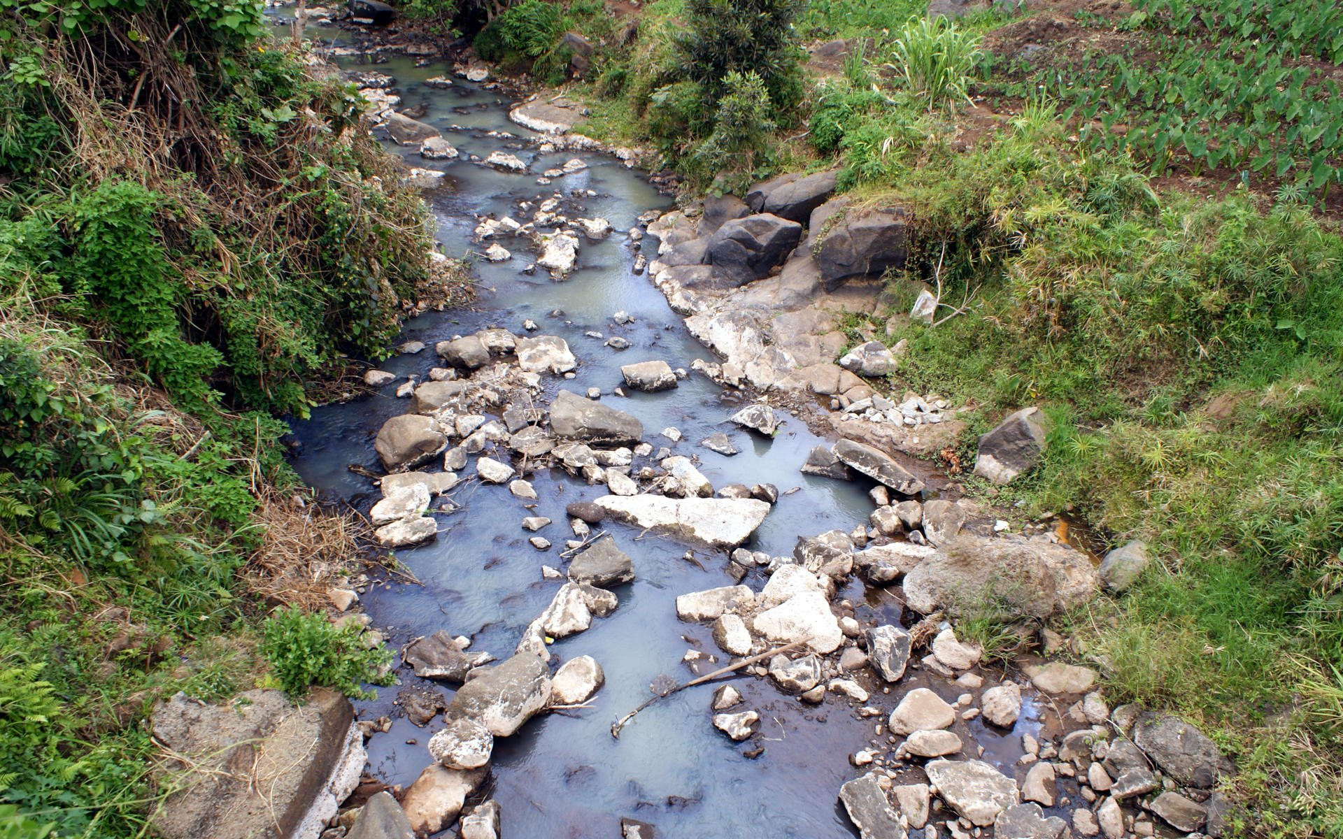 Might the new Mati road open up the closed area to more scrutiny and offer a chance to save a dying legacy of great rivers in Meru?